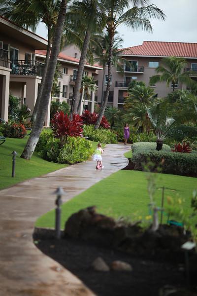 Kauai_D4_AM 022.jpg