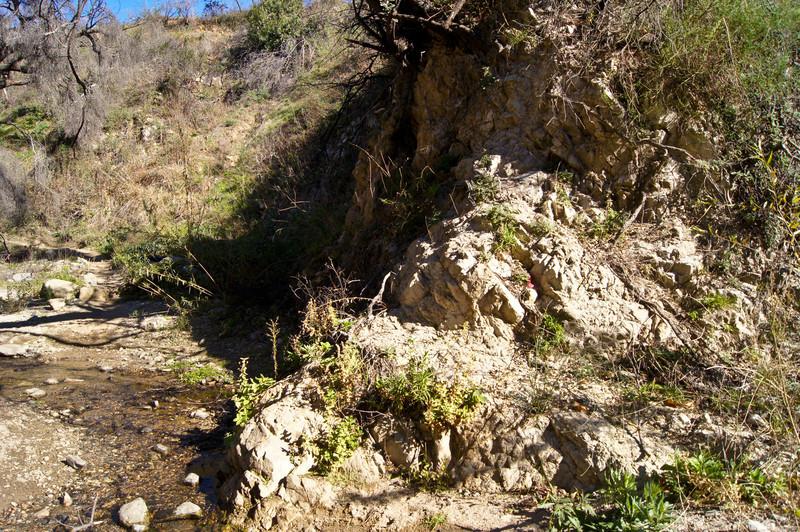 20120113003-El Prieto Trailwork Prep.jpg