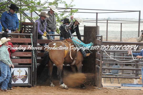 Saddle Bronc Second Section