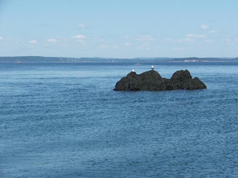 Maine 2007 055.JPG