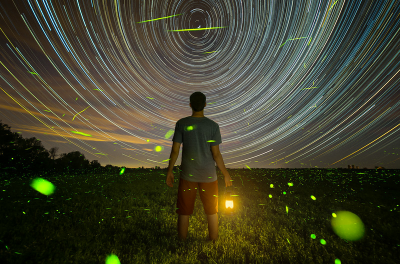Stars and fireflies.jpg