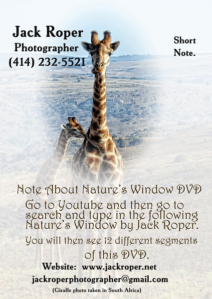 Letter head Africa    copy.jpg
