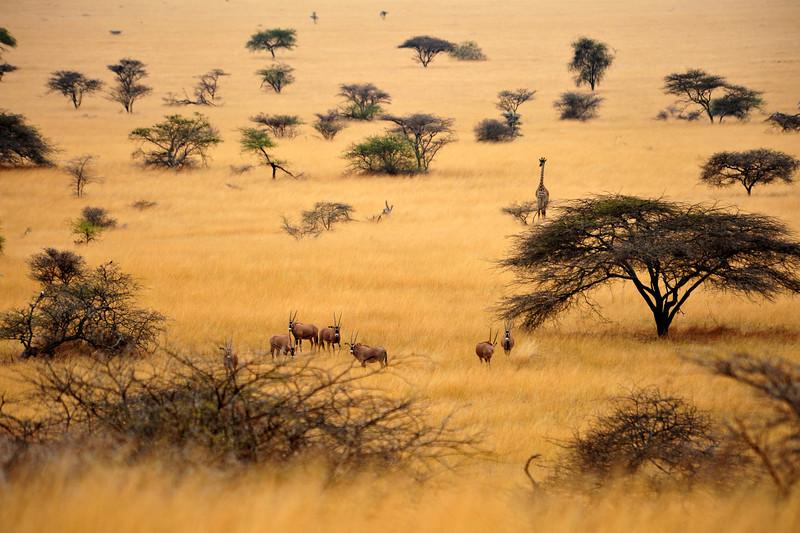 Africa 2010-099.JPG