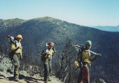 Burn Area Emergency Restoration