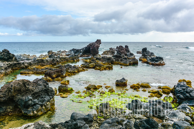 Maui76.jpg