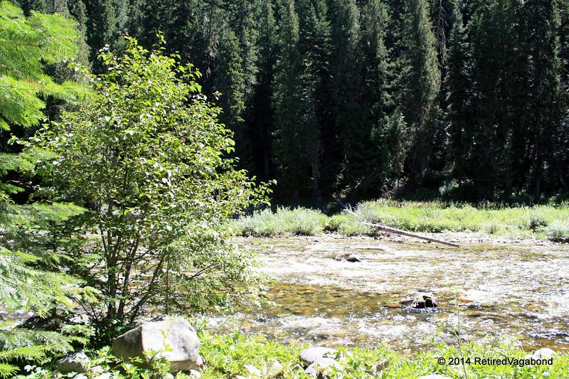 Lolo Creek at DeVoto Memorial Cedar Grove