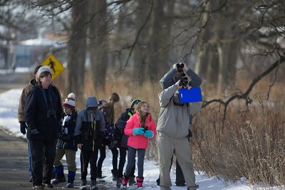Bird county for kids in St. Charles