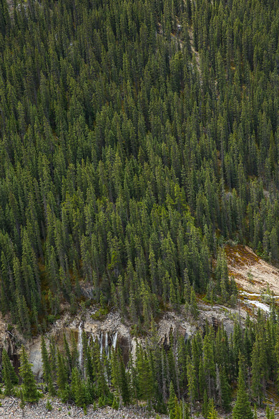 Banff 2016-5500.jpg