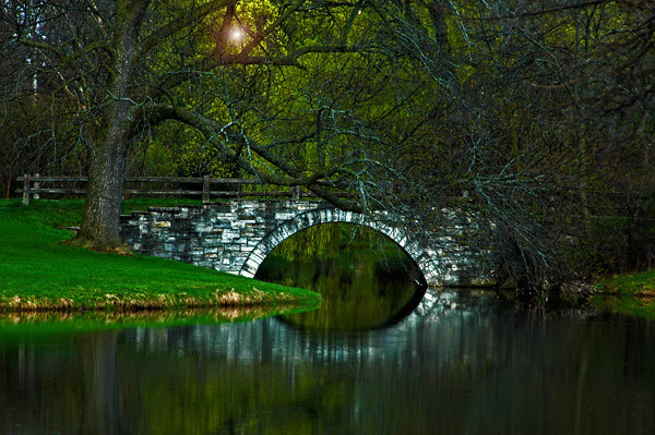 Bridge among the green  best with text.jpg