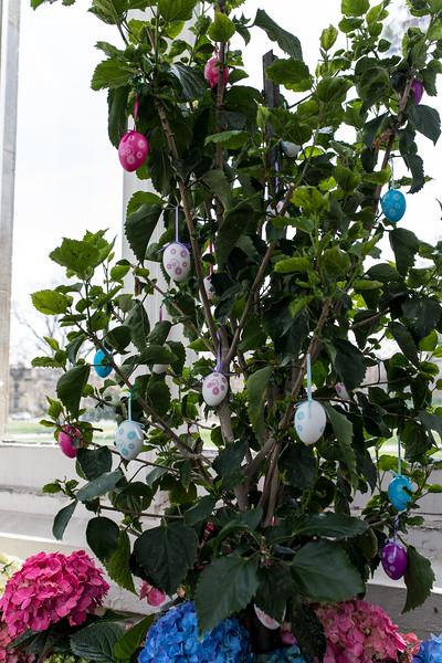 Easter Flower Show 2017