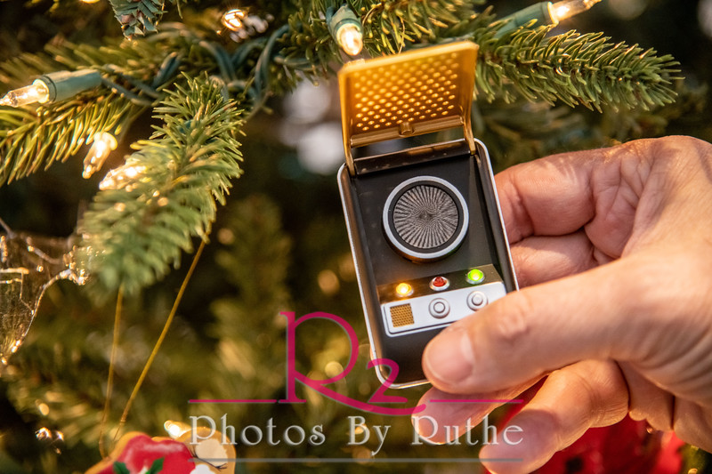 Leal_Christmas-18.jpg