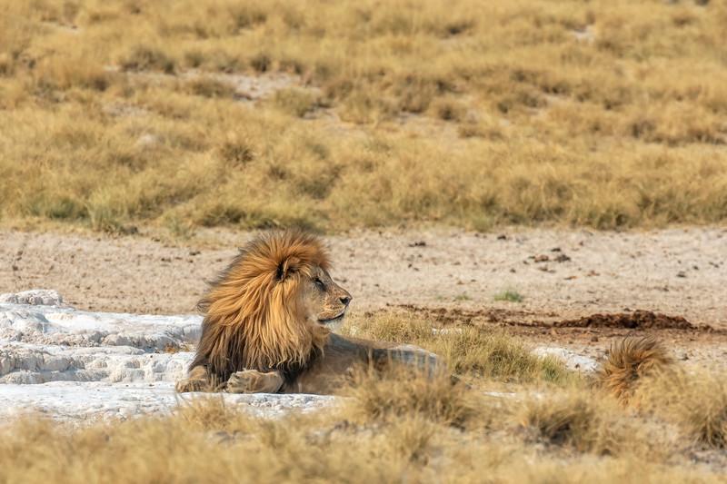 Namibia E4A4956.jpg