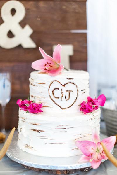 Macheski Fuller Wedding172.jpg