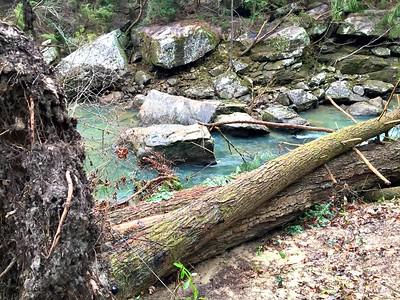 1-8-16 sipsey flood damage