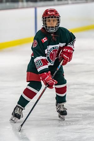 2018-19 North Toronto Tier 1