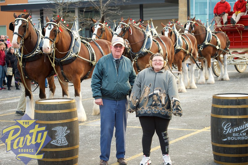 Clydesdale Portraits 161.jpg