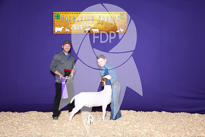 Market Goat Backdrops