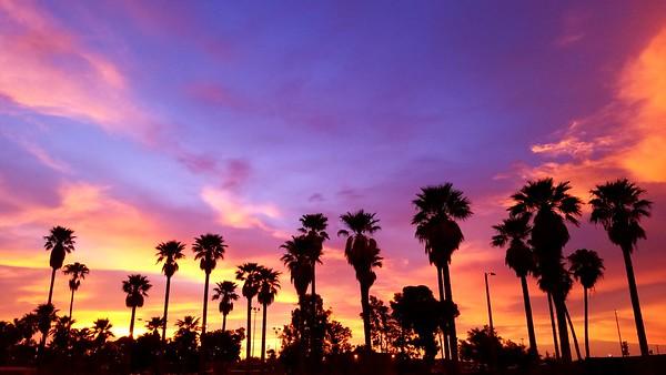 2018 Arizona Summer