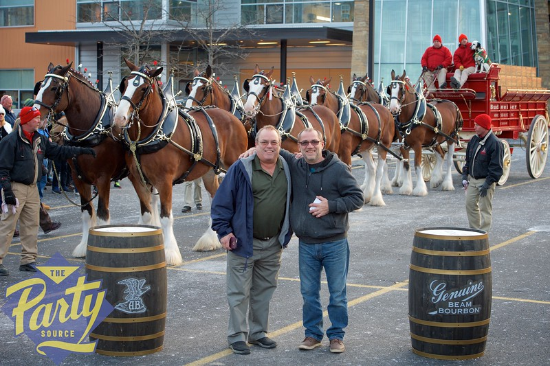 Clydesdale Portraits 255.jpg