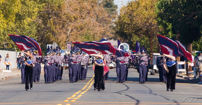 Freedom HS 2014 Delta Bands Review