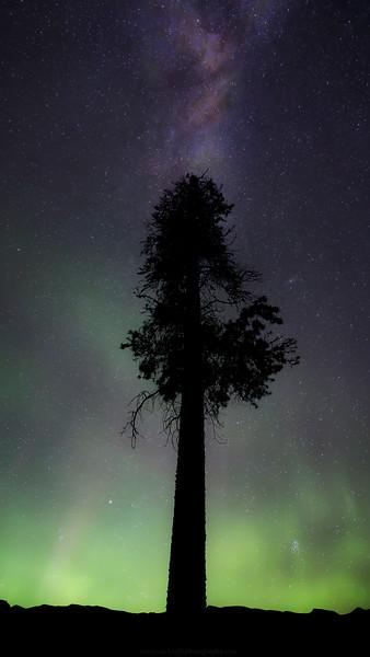 Galactic Aurora copy.jpg