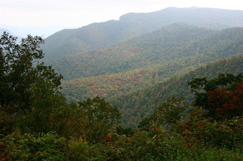 Pisgah Forest 9-30-12 119.jpg