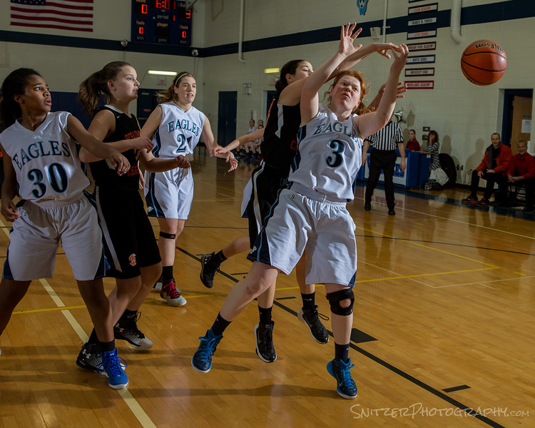 willows hs hoop 2-2-17-1154.jpg
