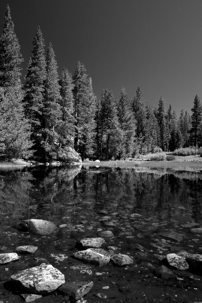 Small Pond in BW