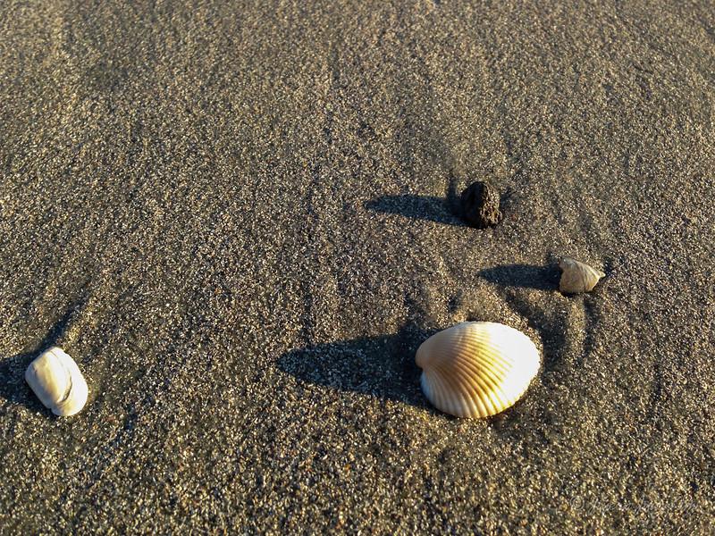 USA-SC-Myrtle Beach-2954.jpg