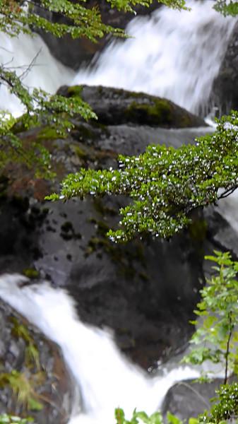 Pingo_River_003.jpg
