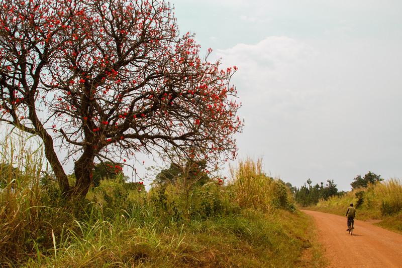 Uganda_GNorton_03-2013-134-2.jpg