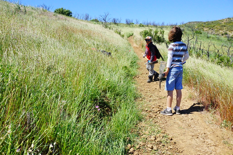 20170429011-SMM Trail Days, Trailwork.JPG