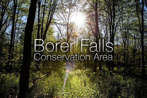 Borer Falls Conservation Area