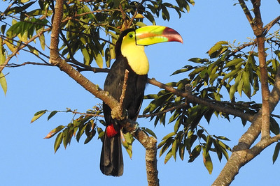 BZE Belize-Highlights=