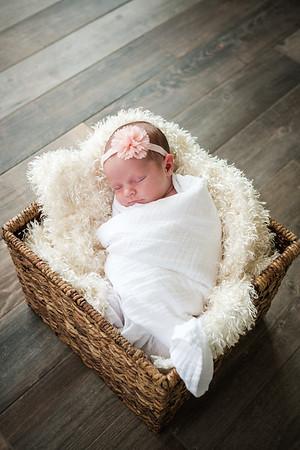 Avery - Newborn