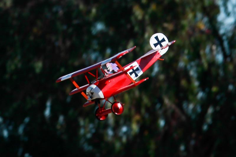 FokkerDr1_007.jpg