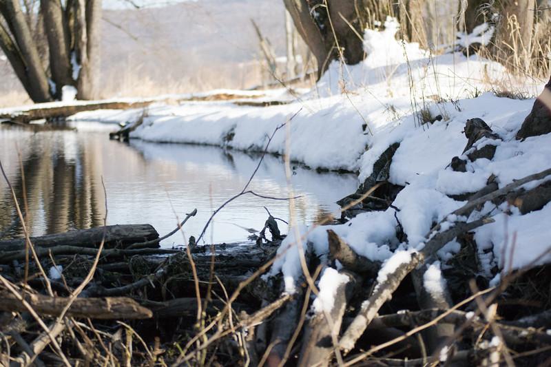 *2018-02-18 Wallkill River Kayaking in Winter-2018 02 18 (94 of 127)-040.jpg