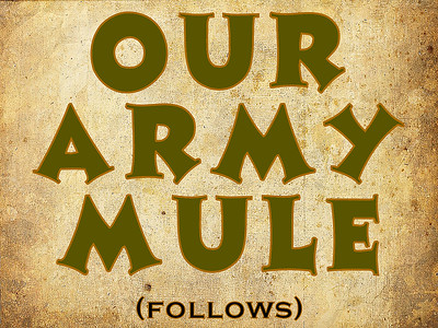 ARMY MULE, DIVIDER (NO PHOTOS)
