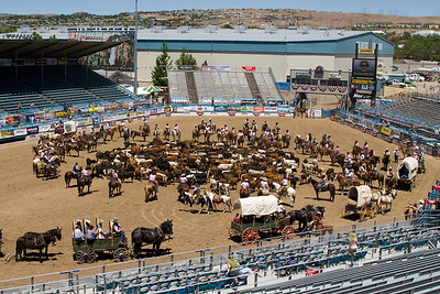 Reno Rodeo Cattle Drive - 2010