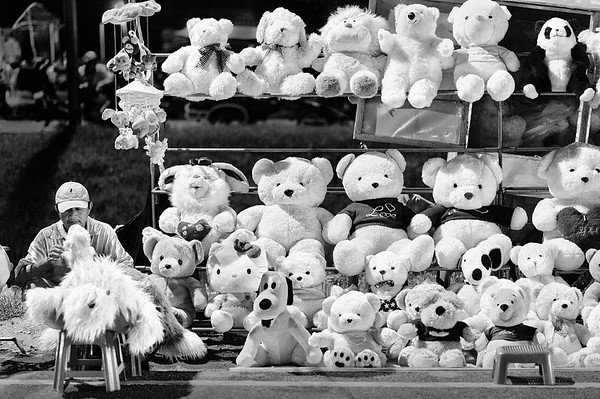 Teddy Bears for Sale