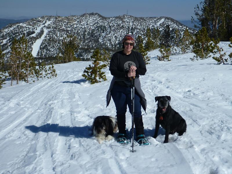 Mt Rose Ski Resort, looking East from Tamarak Peak.