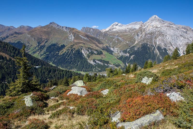 Herbst-im-Rheinwald-D-Aebli-050.jpg