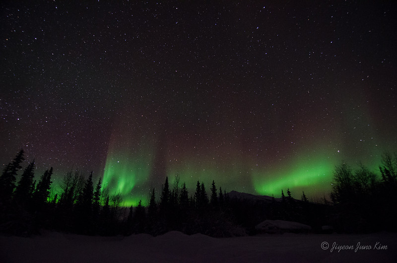 USA-Alaska-Wiseman-Aurora-2817.jpg