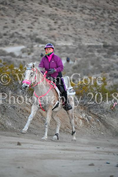 2018 Endurance Rides