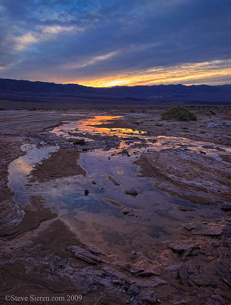 Death_Valley_Water_Salt_Creek_9117 B.jpg