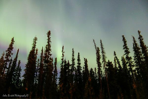 Fairbanks Northern Lights