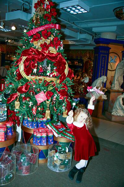 Santa's house - November 23, 2008