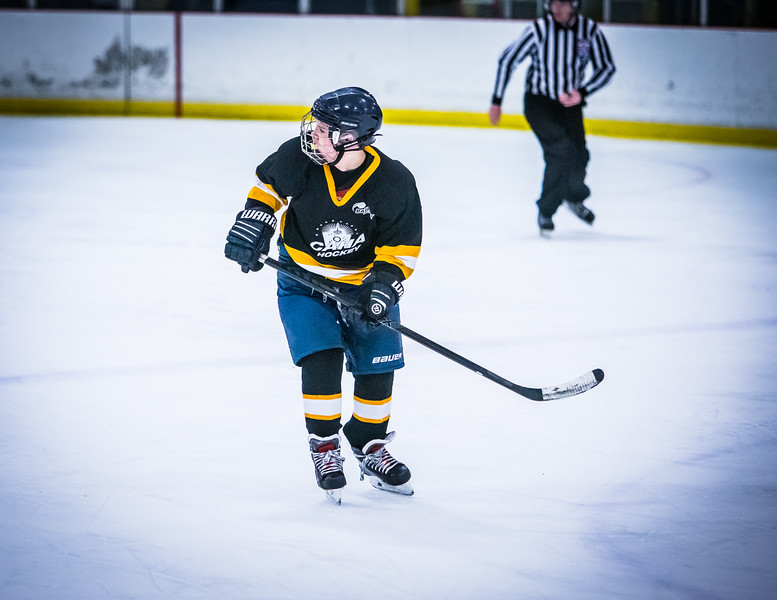 Bruins2-443.jpg