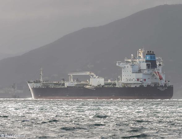 'Maersk Caelum'