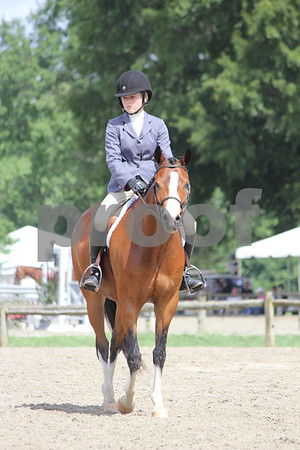 VPBA Young Ponies Under Saddle